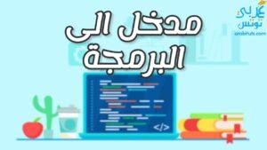 مدخل الى البرمجة